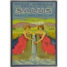 "Italian Ad Poster ""SALUS"" Mineral Water"
