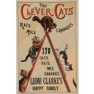 """Original Vintage British Poster for """"The Clever Cats"""" Performance ca. 1900"""
